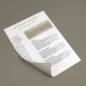 Classic CV Writing Services